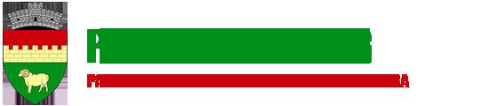 Primaria Sugag